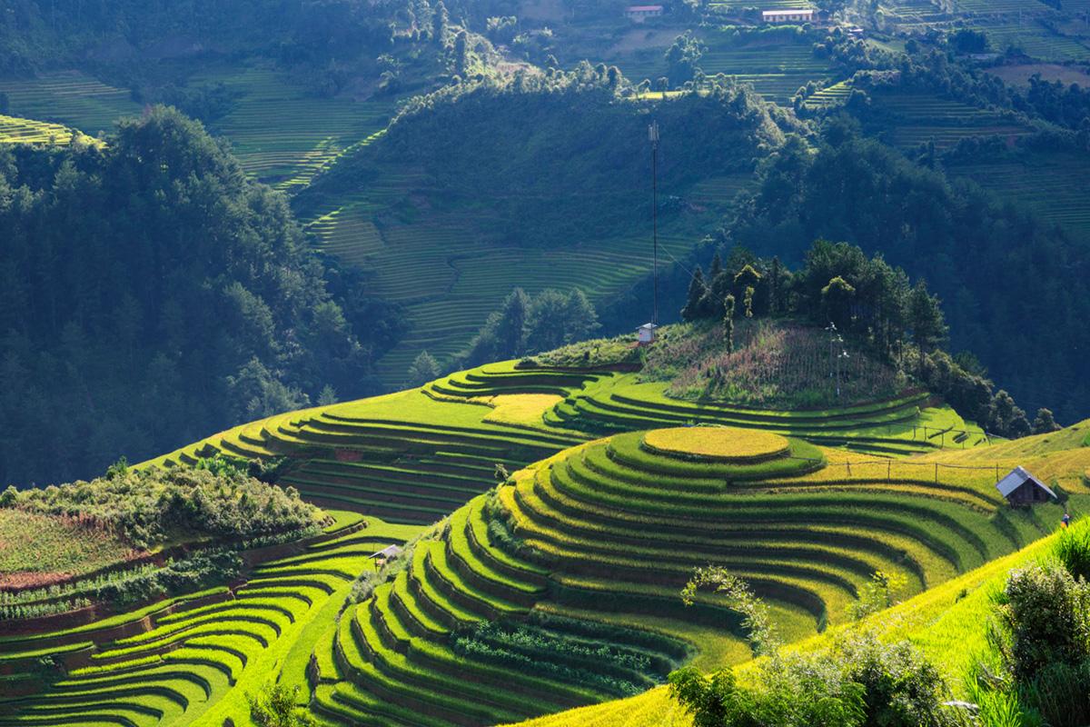 Mu Cang Chai Yen Bai Vietnam